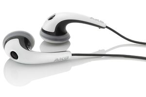 AKG K 313