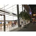 Apple valmistautuu aloittamaan myynnin tänään julkistettaville laitteille heti tapahtuman jälkeen?
